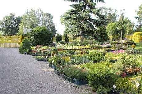 Kertészet nyitva tartás