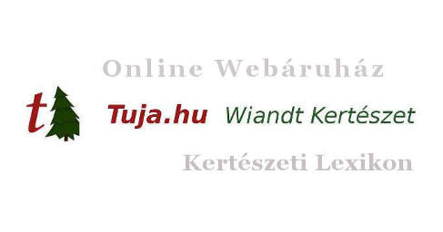 Wiandt Kertészet Kertészeti lexikon cikk -