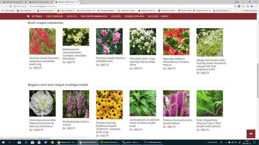 webáruház lerakat fotó