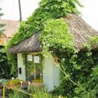 Online kertészet
