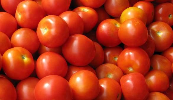 Zöldségtermesztés, zöldségek zöldségfélék