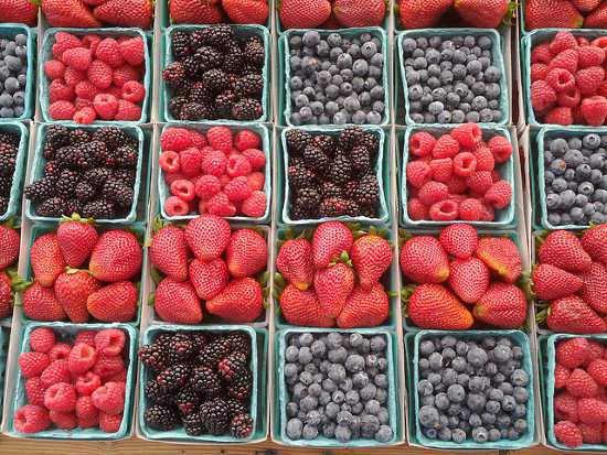 Bogyós gyümölcsök leírása Bogyós gyümölcs fajták