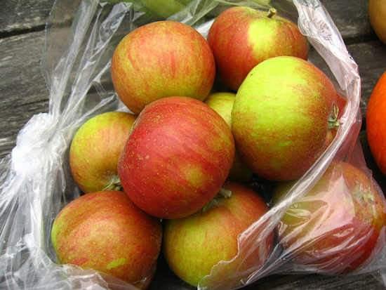 Régi almafajták, Történelmi alma fajták