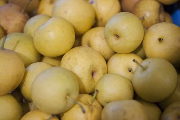 Alma termésű gyümölcsök, Érési idő, Porzó fák