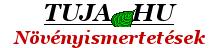 Wiandt Kertészet | Növény Csomagküldő Webáruház Komárom