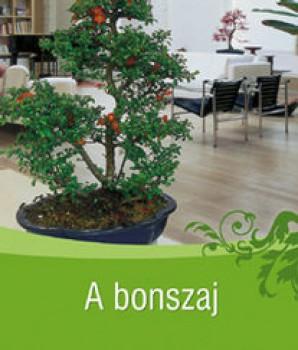 Könyv A bonszaj - Szerző: Tiziano Zanini