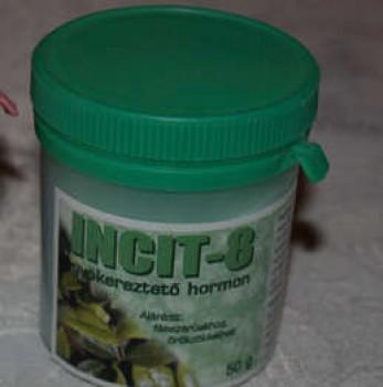 Gyökereztető hormon por - Incit 8 fás szárú és örökzöld növények gyökereztetéséhez