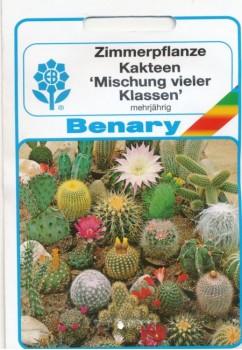 Virágmag Kaktusz mag