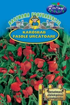Zöldség vetőmag Tűzbab karósbab