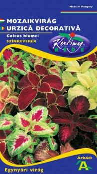 Mozaikvirág - Virág vetőmag, Virágmag